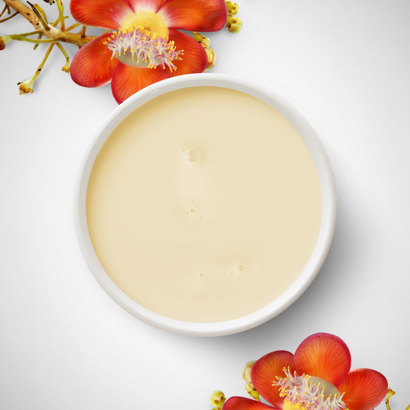 Small bowl with creamy product on a white background and red flowers on the edge.