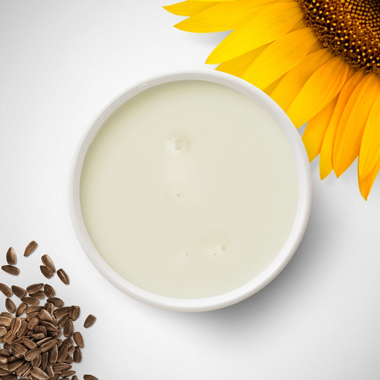 Creamy liquid in a bowl with sunflower petals and seeds around the edge.