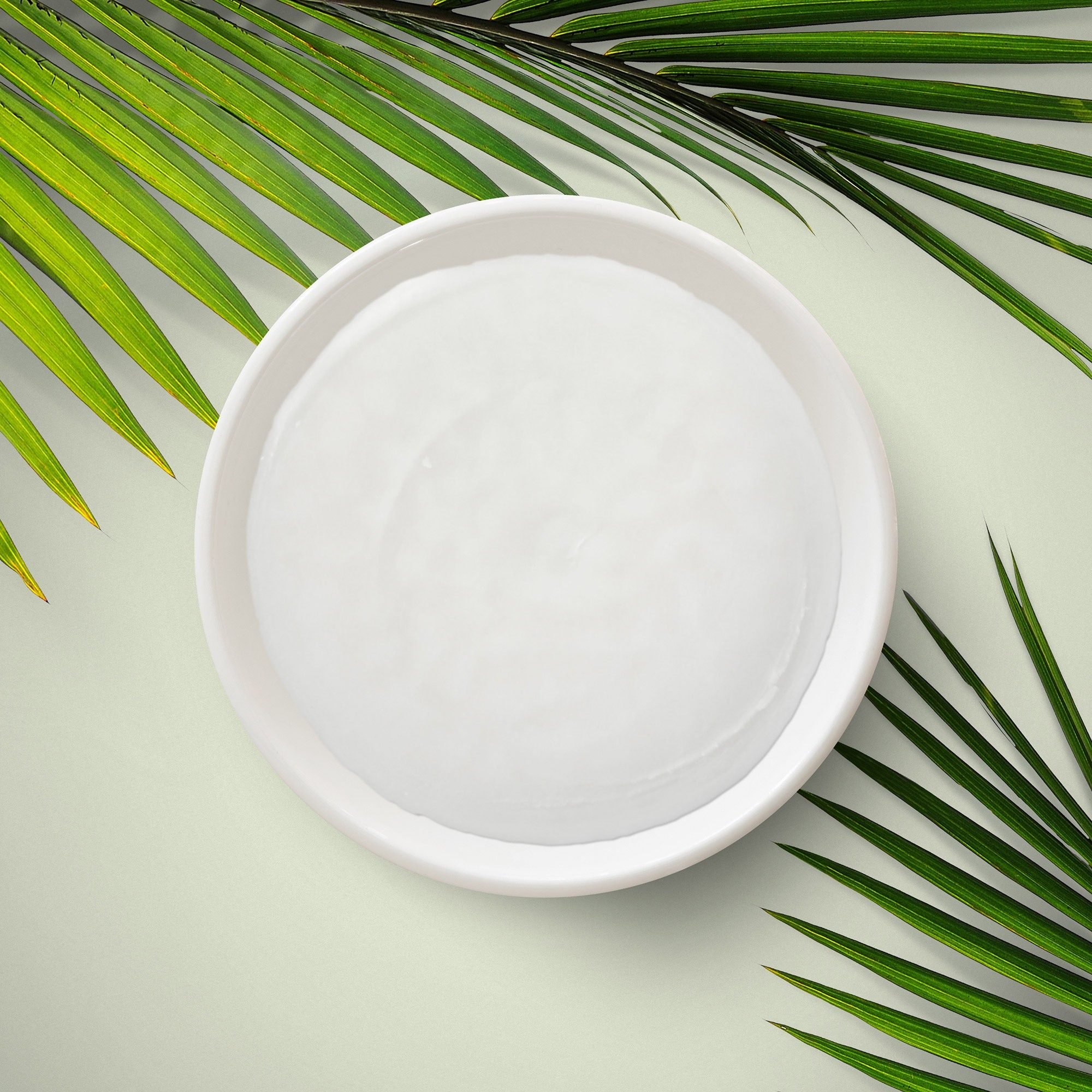Cetyl alcohol, a thick, white liquid, in a bowl on a green background with palm leaves around.